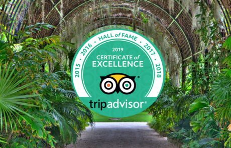 McKee Botanical Garden receives TripAdvisor's Certificate of Excellence Hall of Fame award
